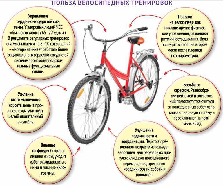 Польза велосипеда для мужчин