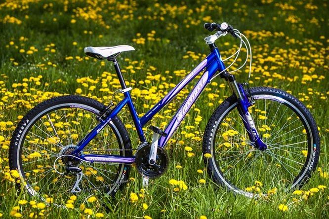 Велосипед Element Electron 2.0